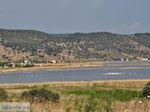 Natuurgebied voor vogels aan de baai van Kalloni foto 2